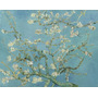Gravura P/ Quadro 90x114cm Van Gogh Obra Amendoeira Em Flor