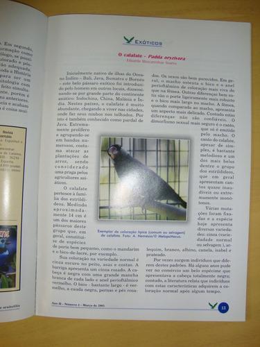 Revista Aves - Número 4