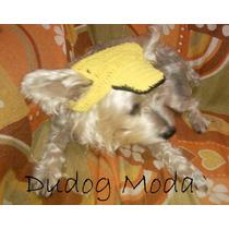 Boné De Cachorro Em Amarelo - M - Frete Gratis!