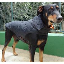 Capa De Nylon Metalassê Para Cães De Médio A Grande Porte