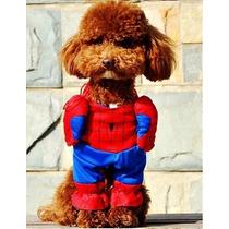 Roupa Fantasia Homem Aranha Spiderman Pet Cães Gatos