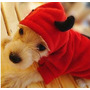 Roupa Fantasia Diabinho Capetinha Para Cães