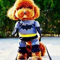 Roupa Fantasia Cachorro Gato Batman Tamanho G