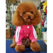 Roupa Casaco De Moletom Para Cachorro Pequeno Porte Gg Rosa