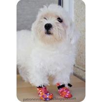 Molde P/ Confecção Sapato Para Caes Reta Galoneira Oerloque