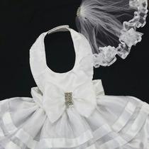 Roupinha De Cachorro Vestido De Noiva Com Véu Frete Gratis
