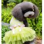 Roupa Vestido Para Cachorro Algodão Saia Tule Tamanho Gg