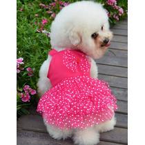 Roupa Cachorro Vestido Verão Raças Pequenas Pet Lord