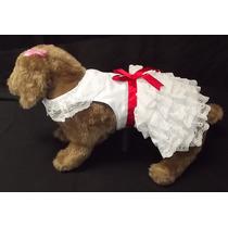 Roupas Vestido Para Cachorros- Pet Lord* Raças Pequenas