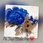 Vestido Pet Azul Festa