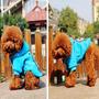 Roupa Polo Club De Cachorro Pet Cão Pequeno Algodão Roupinha