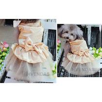 Roupa Cachorro Gato Dourada Fashion Tamanho P Vestido Noiva