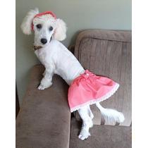 Conjuntinho De Saia E Boné Pet Rosa Cachorrinha Pp