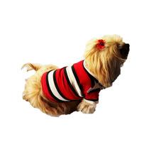 Camisa Polo Pet Roupinha Cachorro Cães Nº.6