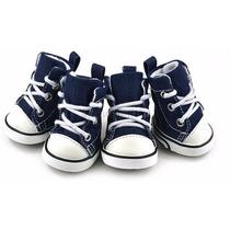 Calçado Sapato Tenis Pet Cães Allstar All Star