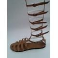 Sandália Gladiadora Do 40 Ao 44 Numero Grande Varias Cores