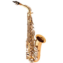 Saxofone Alto Eagle Sa500 Ln - 006644