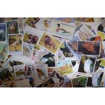 Lote Com 100 Selos Comemorativos Do Tema Fauna