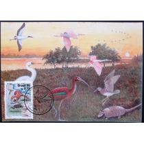 A9429 Máximo Postal Lubrapex 95 Fauna Nº 202/3
