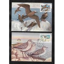 Maximo Postal-rhm Max-116/119 -parque De Abrolhos(aves)