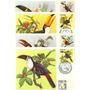 Fauna-tucanos-brasil-4 Maximos Postais 75-78-com C.b.c.-1983