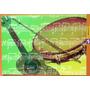 V-8431 - Cartao Postal - Musica Pandeiro Cavaquinho