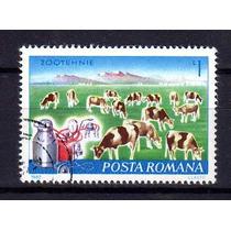 Romenia 1982 * Fazenda .de Gado Leiteiro