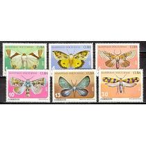 Dams Cuba Insetos Borboletas Mariposas Fauna Mint