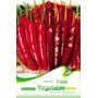 10 Sementes De Pimenta Vermelha P/ Secar - Frete Grátis!