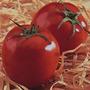 85 Sementes De Tomate Santa Clara Frete Grátis