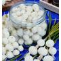 90 Sementes Cebola Crystal White Wax P/ Conserva Fretegrátis