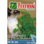 3 X Pacotes Semente Erva Do Gato Catnip Nepeta Gato Cat