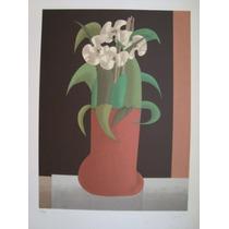 Inos Corradin - Orquídeas - Maravilhosa Serigrafia !!!!