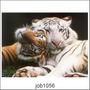 Adesivo Decorativo Parede Animal Tigre Tigres Lindos Job1056