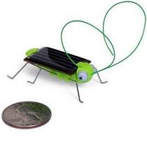 Grilo Gafanhoto Movido A Energia Solar Educativo Sem Pilhas