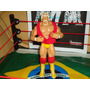 Boneco Hulk Hogan Wwe Rarissimo Jakks Pacifc Roupas De Pano