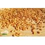 Semente De Linhaça Dourada ( 1kg) -promoção - Safra Nova