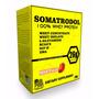 Somatrodol 100% Whey Protein 2kg - Prime