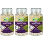Kit 3 Unid Matcha Green Tea 540 Comprimidos 800mg Nutrigold