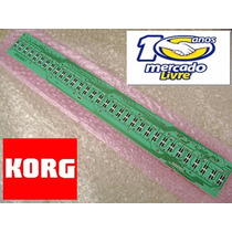 Régua Teclado Korg Triton Tr / Le / Pa80 / N364 32 Contatos