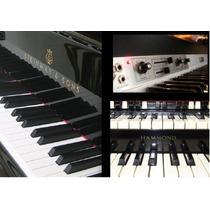 Samples Para Korg Triton Tr Le Pianos,rhodes,hammond B3