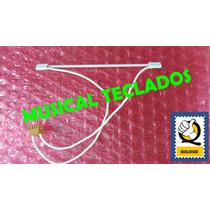 Lampada C/ Cabo Display Visor Teclado Roland Va5 Original