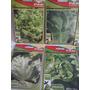Kit Salada Coleção 10 Tipos De Sementes De Alface Diferentes