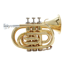 Trompete Em Bb Wpt Gd - Waldman Frete Grátis!!
