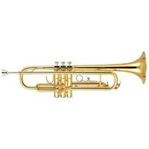 Trompete Dolphin Laqueado Iz4350 Na Loja Cheiro De Música !!