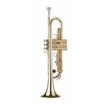 Trompete Michael Wtrm36 Bb Laqueado Com Case + Melhor Preço