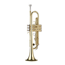 Trompete Michael Wtrm36 Bb Laqueado C/ Case - Envio Imediato