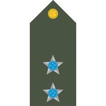 409 Platina (ombreira) Primeiro Tenente (par)