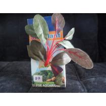 Plantas Artificial Em Seda Peq. 7 A 12 Aquár Alevinosepeixes