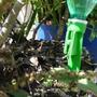 20 Gotejador De Planta Com Garrafa Plástica Pet